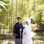 竹林での京都らしい前撮り