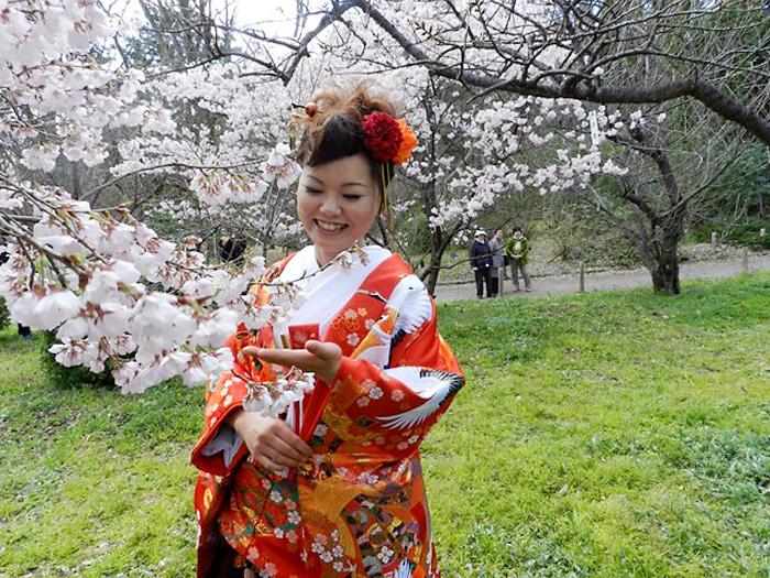 前撮り 桜
