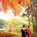 紅葉の前撮り フウの木