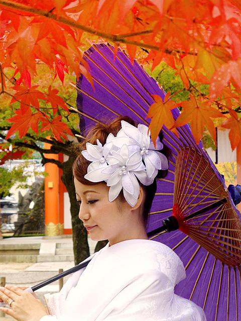 京都前撮り 紅葉
