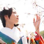 桜の季節の祇園で前撮り