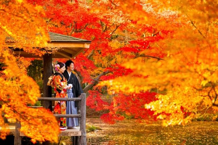 kyoto-maedori-photo-koyo-10